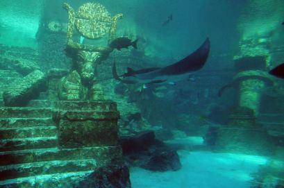 lion-city-underwater